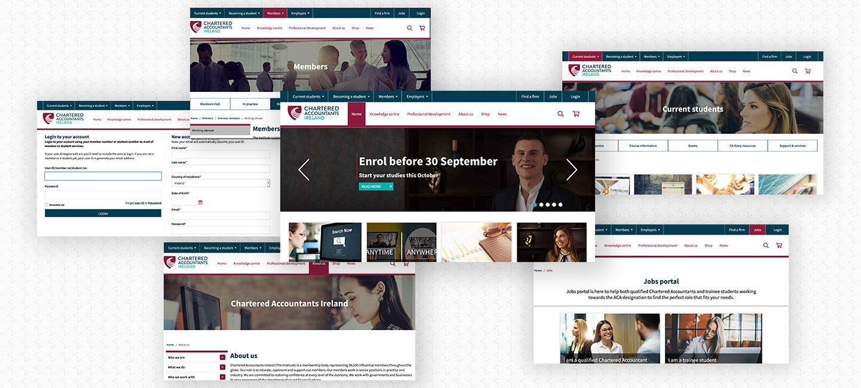 Chartered Accountants Screens